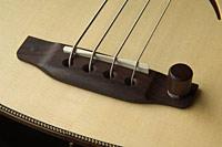 Bass-113